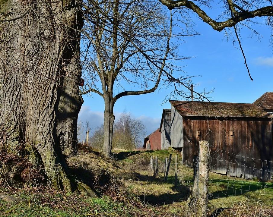 Qué es el Coworking Rural